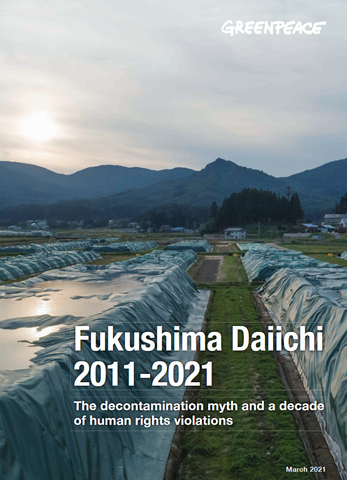 Le rapport « Decommissioning of the Fukushima Daiichi Nuclear Power Station » critique le fait que le plan de démantèlement actuel est illusoire et n'a aucune chance de réussir dans les 30 à 40 prochaines années.