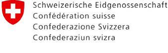 BFE: China-Swiss Energy Working Group trifft sich in China